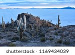 sunrise views of the salar de... | Shutterstock . vector #1169434039