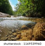 stream with vegetation and... | Shutterstock . vector #1169539960