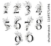 graphic floral numbers   digits ... | Shutterstock . vector #1169571496