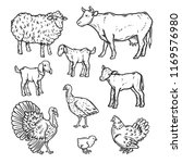 farm animals detailed icon set. ... | Shutterstock .eps vector #1169576980