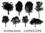 black tree silhouettes on white ... | Shutterstock . vector #1169651296