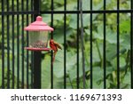 red male northern cardinal... | Shutterstock . vector #1169671393