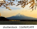 mt fuji. kawaguchiko.sakura.... | Shutterstock . vector #1169691499