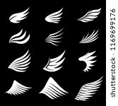 set of white wings on black... | Shutterstock .eps vector #1169699176