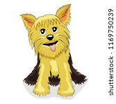 a cute lovely yorkshire terrier ... | Shutterstock .eps vector #1169750239
