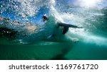 surfing australia wave | Shutterstock . vector #1169761720