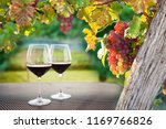 glasses of red wine and ripe... | Shutterstock . vector #1169766826