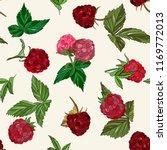 berry  summer seamless pattern... | Shutterstock .eps vector #1169772013