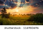 Landscape  Sunny Dawn In A Field