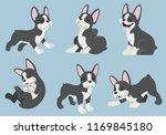 Boston Terrier Dog Set