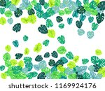 turquoise tropical jungle... | Shutterstock .eps vector #1169924176