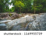 water fall wildlife...   Shutterstock . vector #1169955739