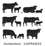 vector cow and calf silhouettes ... | Shutterstock .eps vector #1169963023