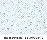 water  rain  dew or splash... | Shutterstock .eps vector #1169989696
