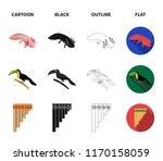 sampono mexican musical...   Shutterstock .eps vector #1170158059