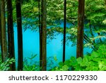 the blue river seen over woods | Shutterstock . vector #1170229330