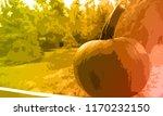 pumpkin   hello autumn | Shutterstock . vector #1170232150