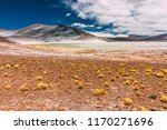 salar de talar in the chilean... | Shutterstock . vector #1170271696
