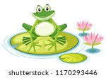 Happy Frog On Lily Pad...