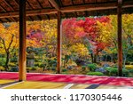colorful leaves in autumn park  ... | Shutterstock . vector #1170305446