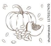 pumpkin and seeds realistic... | Shutterstock .eps vector #1170317470