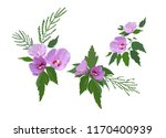 colorful hibiscus flowers and... | Shutterstock .eps vector #1170400939