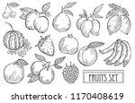 hand drawn decorative fruits... | Shutterstock .eps vector #1170408619