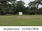 Village Cricket Pitch With...