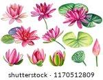 set of beautiful pink lotuses ... | Shutterstock . vector #1170512809