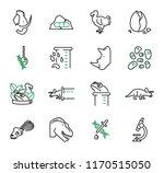 de extinction  resurrection...   Shutterstock .eps vector #1170515050