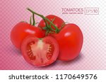 four ripe red tomatoes on a... | Shutterstock .eps vector #1170649576