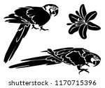 stencil for laser cutting. set... | Shutterstock .eps vector #1170715396