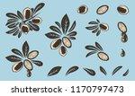 argan vector drawing. isolated...   Shutterstock .eps vector #1170797473