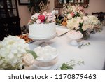 bridal shower cakr | Shutterstock . vector #1170879463