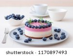 the two color blueberry mini... | Shutterstock . vector #1170897493