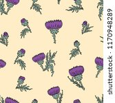 vector pattern of the thistle... | Shutterstock .eps vector #1170948289