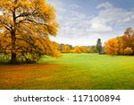panorama. lonely beautiful... | Shutterstock . vector #117100894