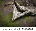 a tiny snail on a dead drying... | Shutterstock . vector #1171018909