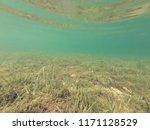 underwater view of crystal... | Shutterstock . vector #1171128529