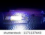 halogen lamp  lamp for plants | Shutterstock . vector #1171137643