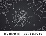 Scary Spider Web Vector...