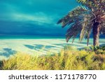 tropical landscape with... | Shutterstock . vector #1171178770
