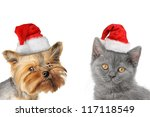 Stock photo merry christmas and happy new year 117118549