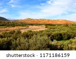 view of a moroccan olive grove  | Shutterstock . vector #1171186159