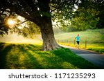 greenwich park with morning... | Shutterstock . vector #1171235293
