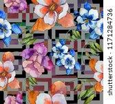 watercolor colorful aquilegia... | Shutterstock . vector #1171284736