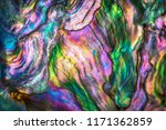 high magnification macro of... | Shutterstock . vector #1171362859
