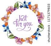watercolor colorful aquilegia...   Shutterstock . vector #1171379833