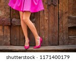 woman wearing pink skirt and... | Shutterstock . vector #1171400179