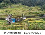 beautiful landscape at banaue... | Shutterstock . vector #1171404373